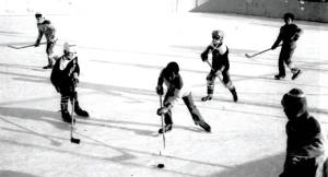 moss-park-hockey-league