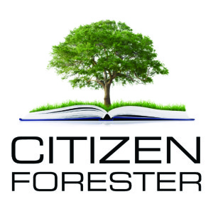 citizen-foreseter