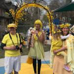 Forsythia-Festival