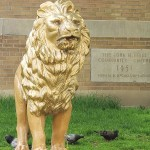 Photo--of-Lion-for-Andre-Bermon-cmyk-article-on-John-Innes-Moss-Park