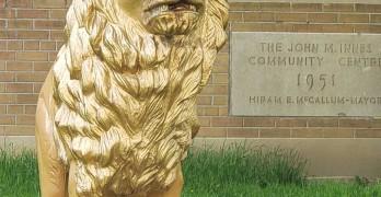 Photo--of-Lion-for-Andre-Bermon-cmyk-article-on-John-Innes-Moss-Park
