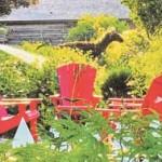 The-GCR-article-Riverdale-farm---Brian-Summers-copy