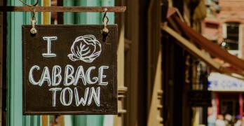 cabbagetown-bia