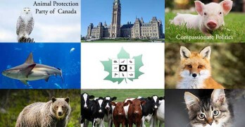 Animal-protection-party